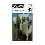 Phoenix Cactus Postage Stamp