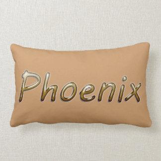 Phoenix - colores del desierto - en moreno cojín