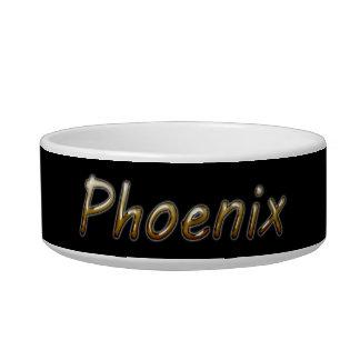 Phoenix - Desert Colors - on Black Bowl