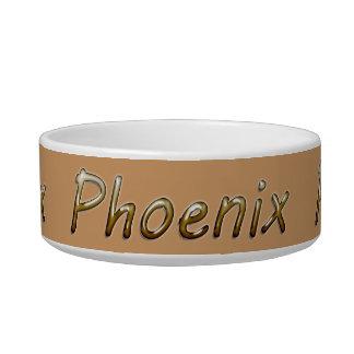 Phoenix - Desert Colors - on Tan Bowl