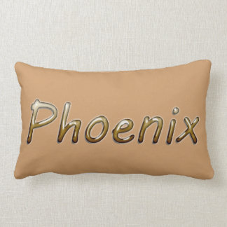 Phoenix - Desert Colors - on Tan Pillow