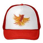 Phoenix Gorro