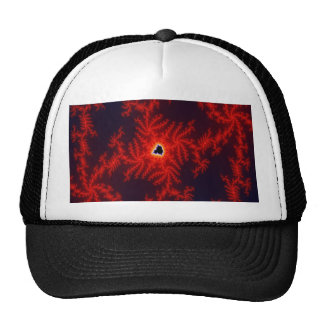 Phoenix Heart Trucker Hat