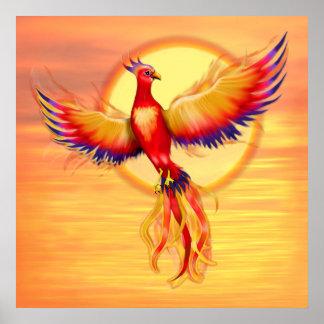 Phoenix que sube - cuadrado póster