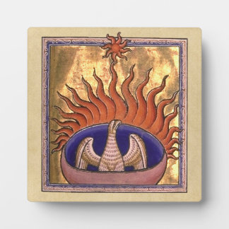Phoenix que sube de las cenizas placas