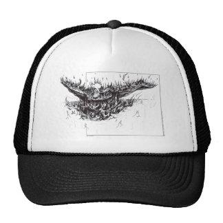Phoenix Reborn Hat