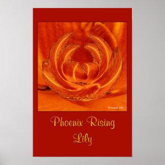 Phoenix Rising Lily Print