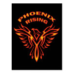 PHOENIX RISING POST CARDS