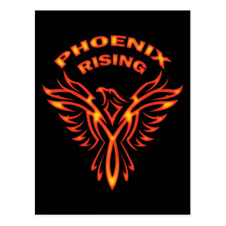 PHOENIX RISING POST CARDS
