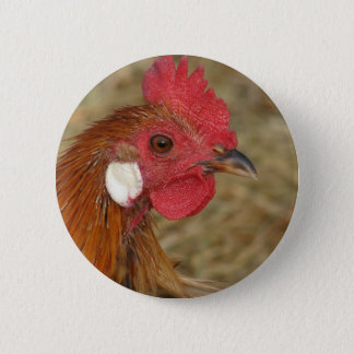 Phoenix Rooster Pinback Button