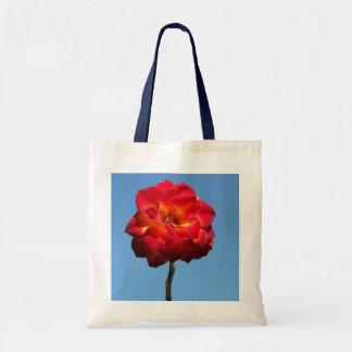 Phoenix Rose in the Sky-bag