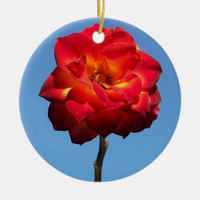 Phoenix Rose in the Sky-circle ornament