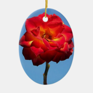 Phoenix Rose in the Sky-oval ornament
