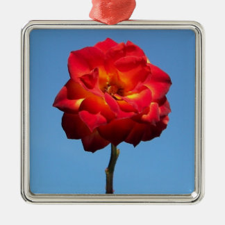 Phoenix Rose in the Sky-prem square ornament