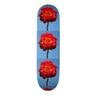 Phoenix Rose in the Sky-skateboard Skateboard