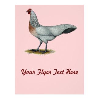 Phoenix Silver Duckwing Hen Custom Flyer