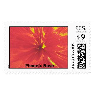 Phoenix subió el sello
