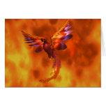 Phoenix Tarjetas