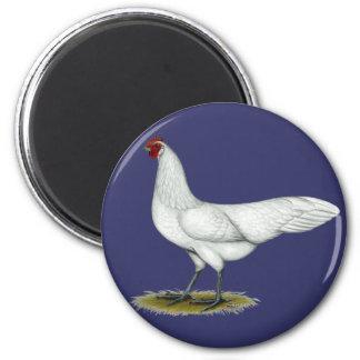 Phoenix:  White Hen Fridge Magnet
