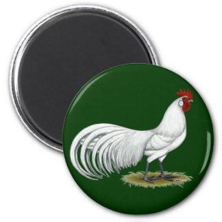 Phoenix:  White Rooster Fridge Magnet