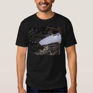 PHOGRAPHING FAIRIES T-Shirt