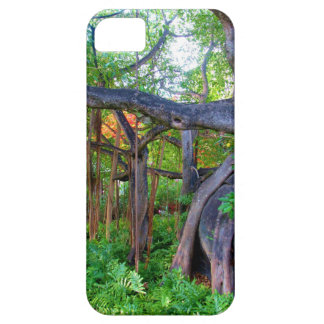 Phone case: Virgin Gorda iPhone SE/5/5s Case