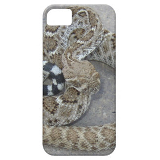 Phone Case with Rattlesnake iPhone 5 Covers