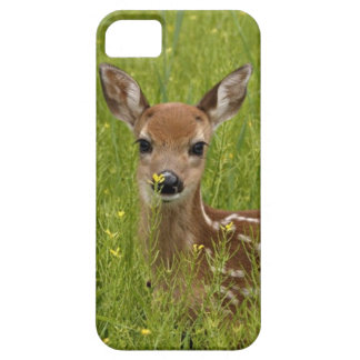 Phone cover with picture of beautiful baby deer