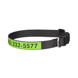 Phone My Home Fluoro Green, Pet-owner Gift Dog Collars