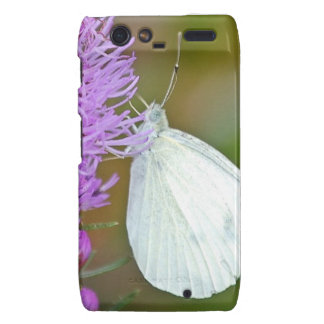 phonecover de la mariposa RAZR Droid RAZR Carcasas