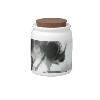 Phorid Fly Painting Candy Jar