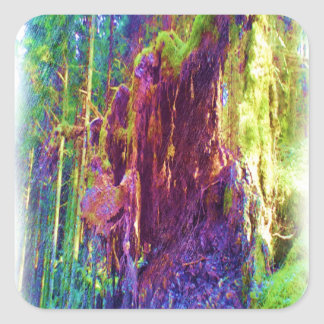Photo art of fallen tree square sticker
