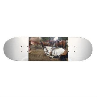 Photo Bomb Horse Skate Deck