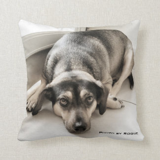 photo by Roque Throw Pillow
