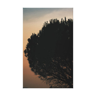 Photo canvas tree silhouette