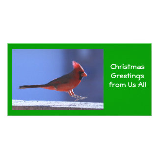 Photo Card: Cardinal Landing Card