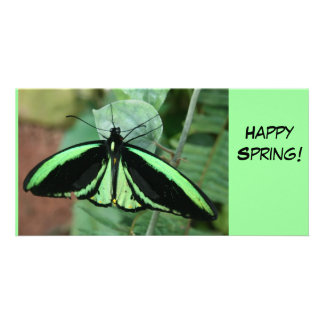 Photo Card: Green Butterfly