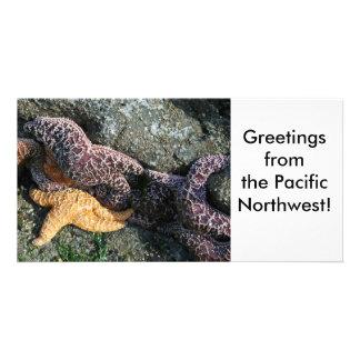 Photo Card:  Starfish Card