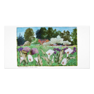 photo cards - art quilt Callas at the Farm