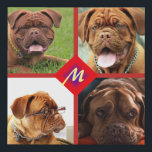 """Photo Collage Any Color Background Dog Template Faux Canvas Print<br><div class=""""desc"""">You can use any photos you like on these collages.</div>"""