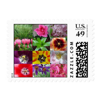 Photo Collage - Postage Stamps