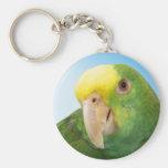 Photo Double Yellow Headed Amazon Parrot Key Chains