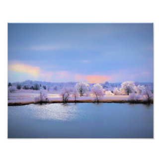 Photo Enlargement, Icy Pond and Willows in Pastel