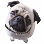 "Photo figure ""pug &quot; cutout<br><div class=""desc"">Photo figure for setting up</div>"