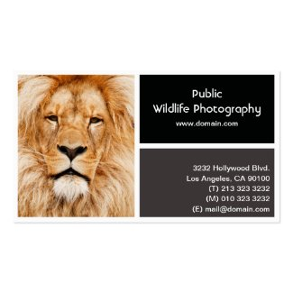 Photo Frame Photography Photographer Business Card