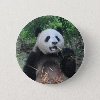 Photo Giant Panda Button