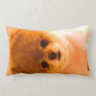 Photo Lumbar Pillow Gift