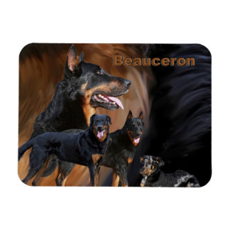 photo magnet beauceron collage