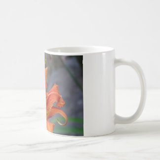 Photo Mug With a Tiger Lily Flower