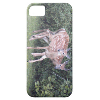 Photo of 2 cute fawns iPhone SE/5/5s case
